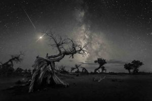 Across the Sky of History © Wang Zheng
